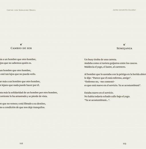 Tragaluz___Cartas_con_Geraldino_Brasil___Libros___Antimateria_4