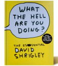 What the hell are you dping- David Shrigley - Libros Antimateria