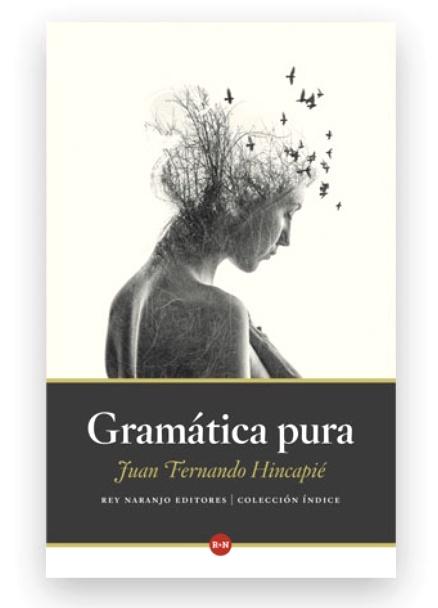 gramatica-pura-libros-antimateria