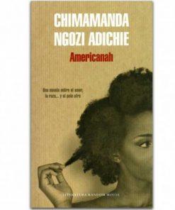 Imágen 1 del libro: Americanah