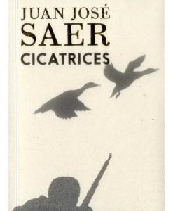 9789585474130-saer-cicatrices-laguna-libros-antimateria
