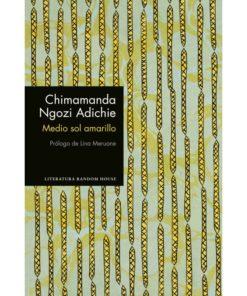 Imágen 1 del libro: Medio sol amarillo