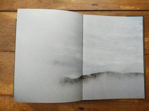 Imágen 4 del libro: VERDE